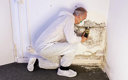 Fachmann misst Luftfeuchtigkeit im Keller
