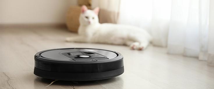 Schwarzer Staubsaugerroboter im Vordergrund, im Hintergrund eine weiße Katze
