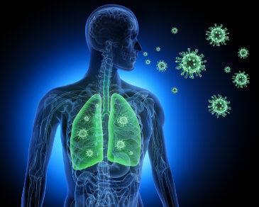Gegen Krankheitserreger und Schadstoffe wappnen